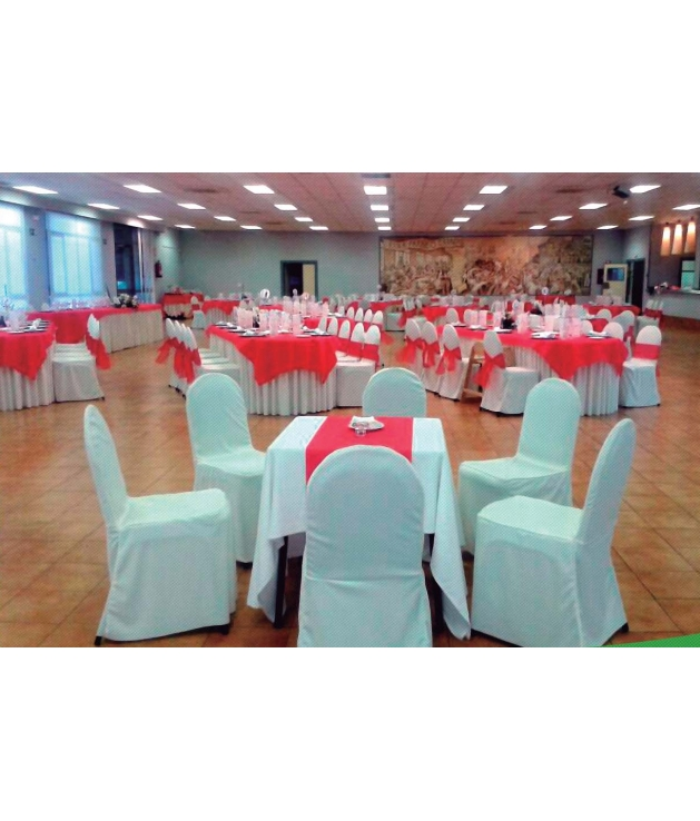 Funda de silla hostelería 011