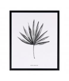 Cuadro Palm
