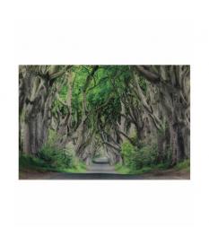 Cuadro retablo cristal camino 150x100 cm