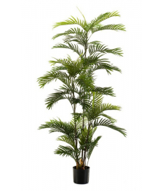 Árbol palmera ECO