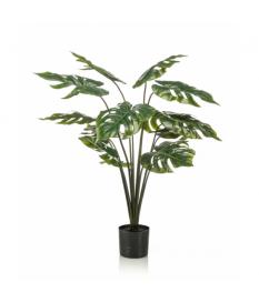 Planta MONSTERA de 95 cm