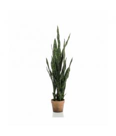 Planta SANSEVERIA de 100 cm