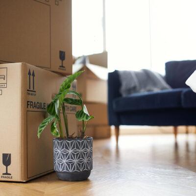 Tips para decorar una casa en una mudanza